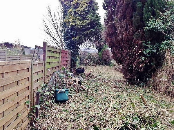 Clearing back garden with BrushDestructor Blade 2 (600x449)