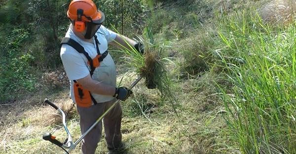 Long grass stalling brush cutter