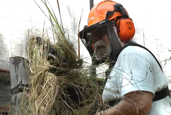 Clearing stalled brush cutter head of tangled grass