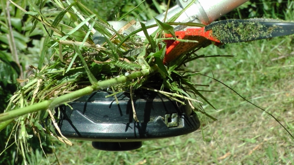 High Powered Echo brush cutter gear head clogged up with couch grass