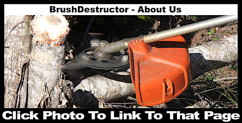 This photo links you to the about us page on the BrushDestructor web site